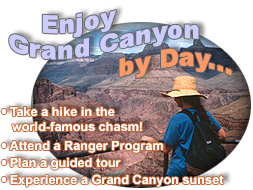 Enjoy Grand Canyon by Day...